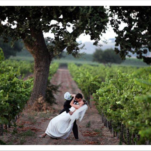 A true Sierra Wine Country Wedding!