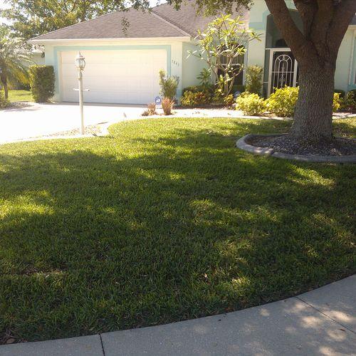 A lovely M. Ramirez Lawn