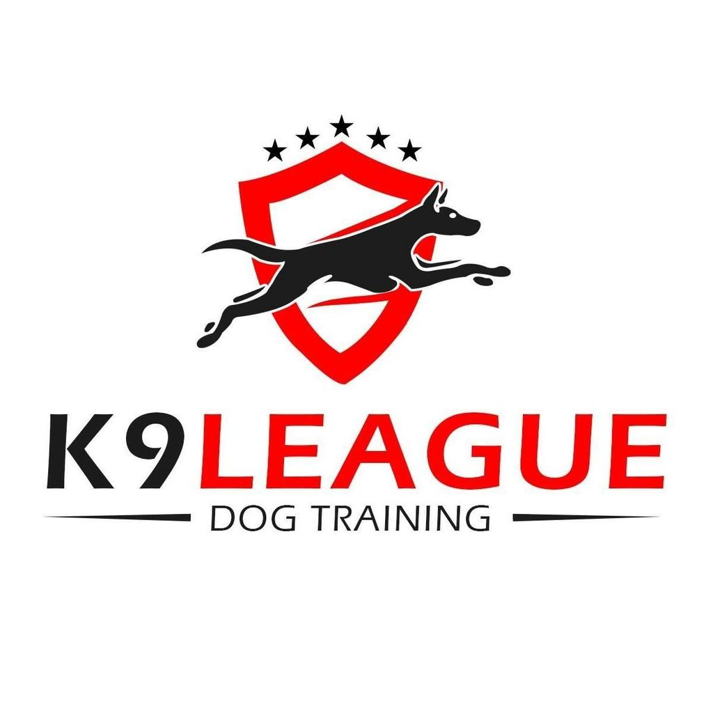 K9 League-Dog Training Dallas/Ft. Worth