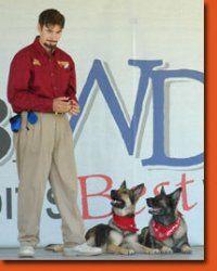 SoCal Dog Training, Inc.