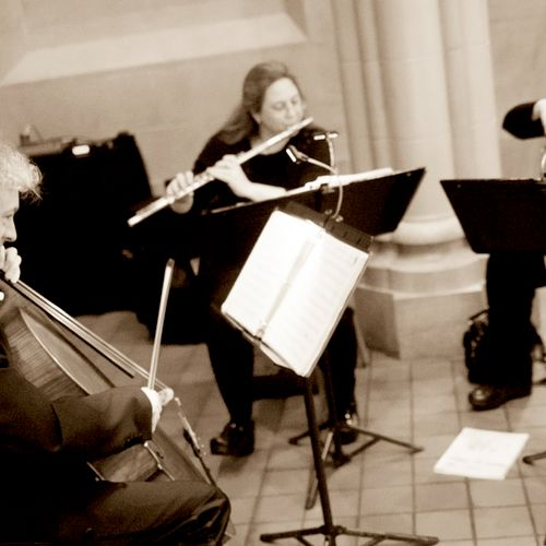The Antares Musicians - Flute and Strings Trio performing at The Tremont Grand