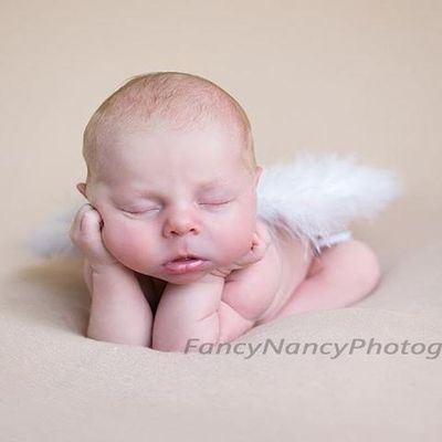 Avatar for Fancy Nancy Photography, LLC