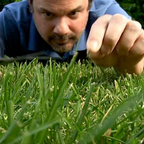 Healthy Grass is a Serious Business :)