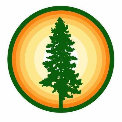 Avatar for Nova Tree Solutions