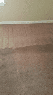 This customer didn't think these carpets could be saved