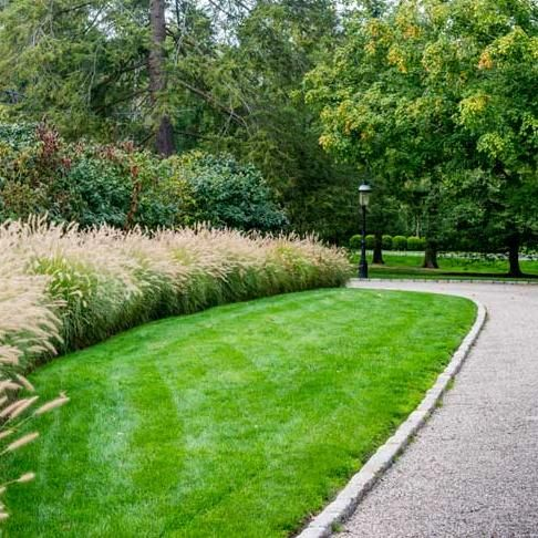 River Oaks Lawn Solutions