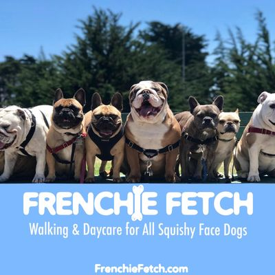 Avatar for Frenchie Fetch SF