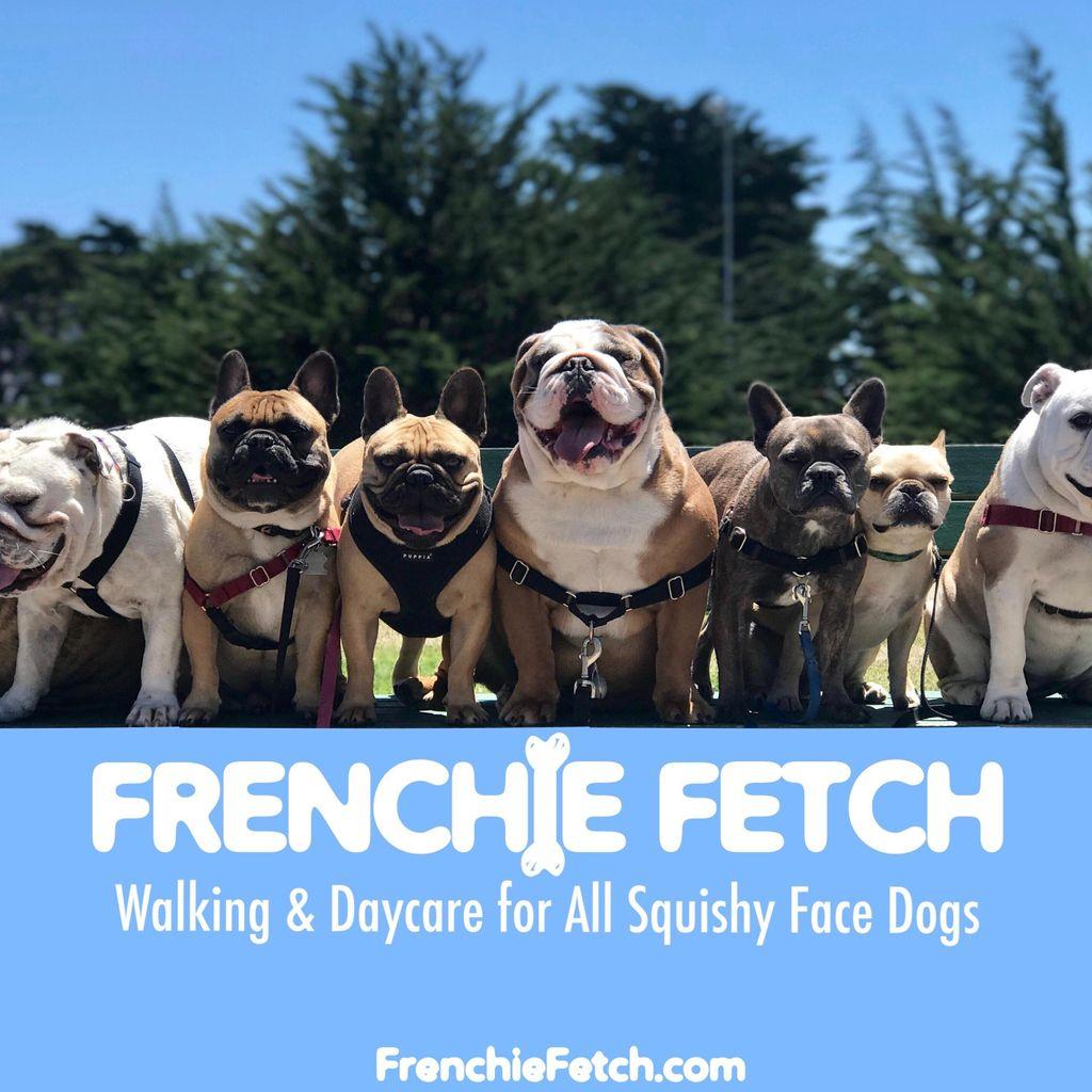 Frenchie Fetch SF