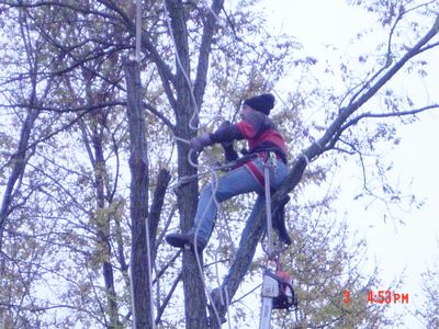 Avatar for Evening & Weekend Tree Service Waukesha, WI Thumbtack