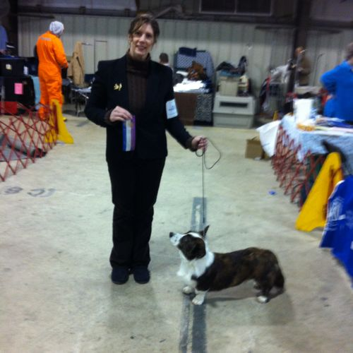 2012 Showing Whimze in breed
