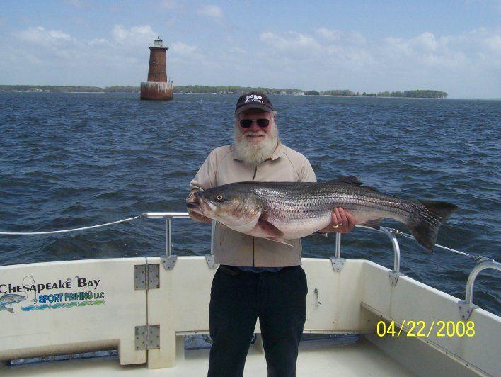 Chesapeake Bay Sport Fishing LLC