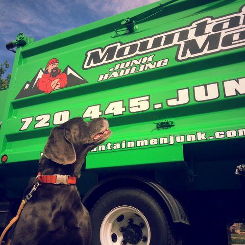 Meet Sally! The official Weimaraner mascot of Mountain Men Junk Removal!