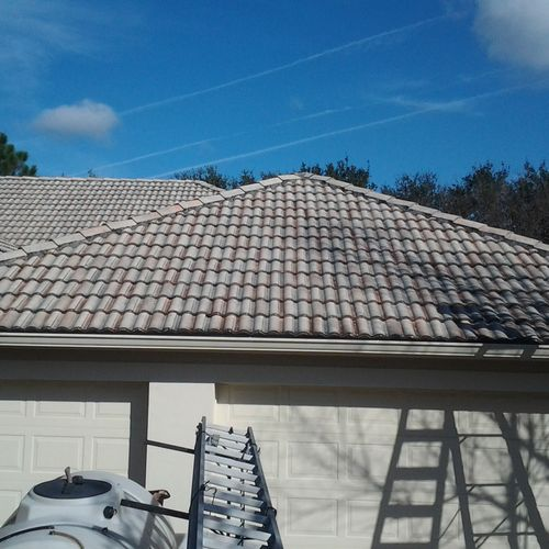 Soft washing for roofs