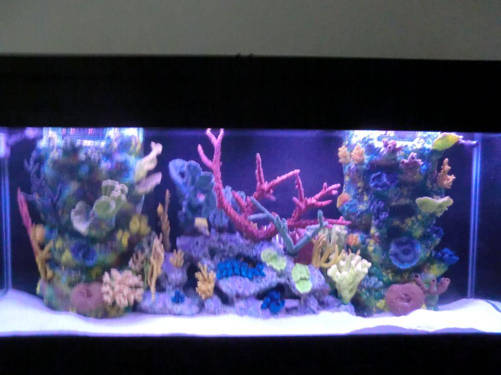 Aquarium Center, Inc.