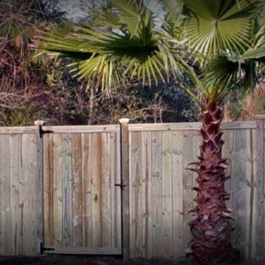 BREED FENCE