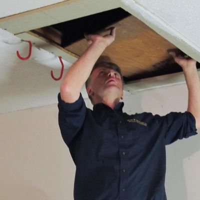 Avatar for H to H Services LLC  Home Inspections Pickerington, OH Thumbtack