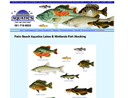 Fish and Aquatic Website design