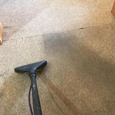 Avatar for Maine Carpet Cleaning