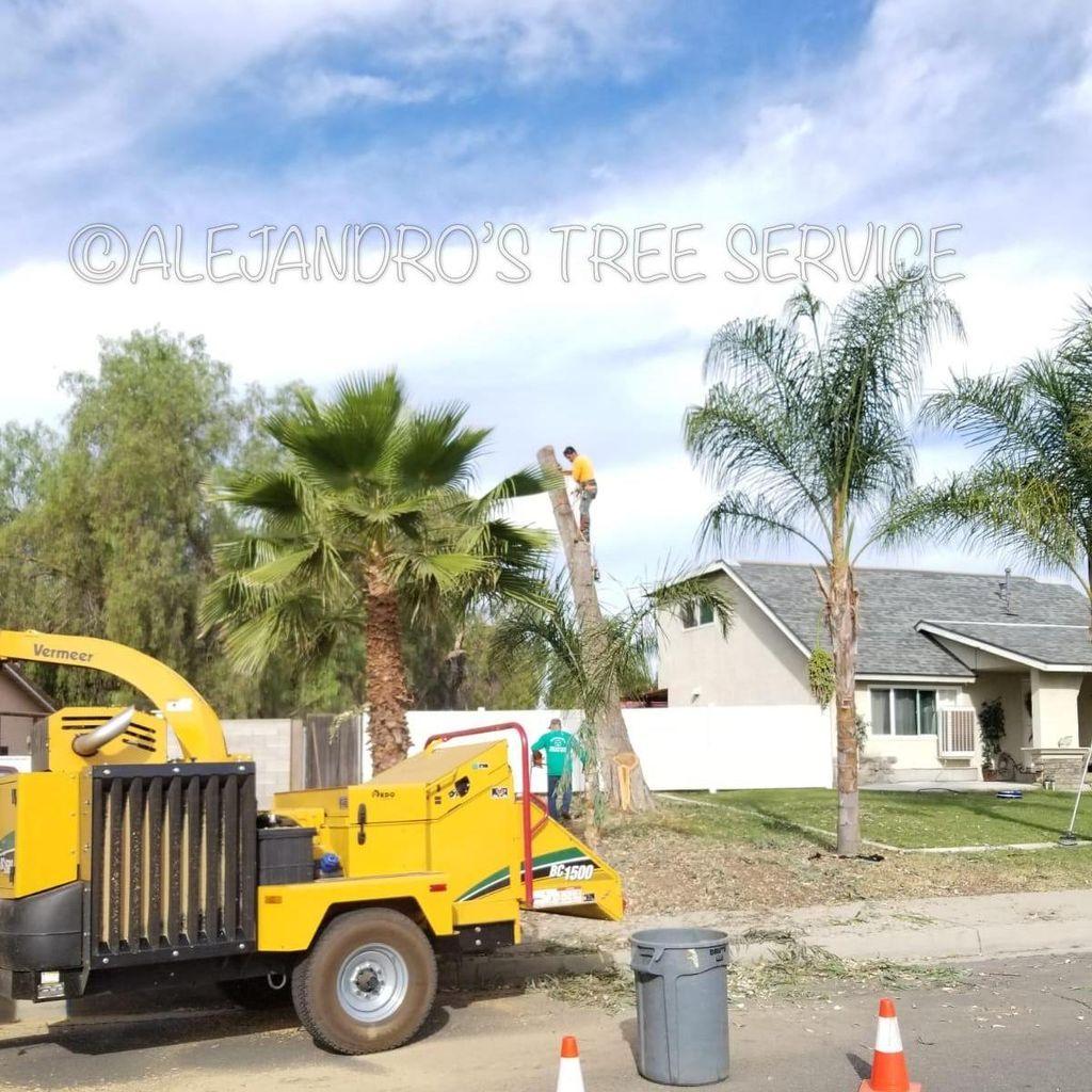 ATS TREE SERVICE