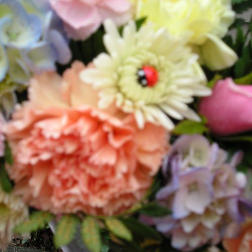Always a lady bug in each arrangement You may have to look to find it sometimes, but it is there.....