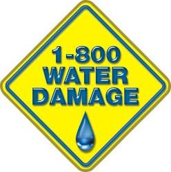 Avatar for 1800 Water Damage