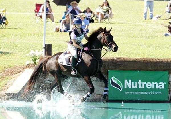 Ariatti Equestrian Services
