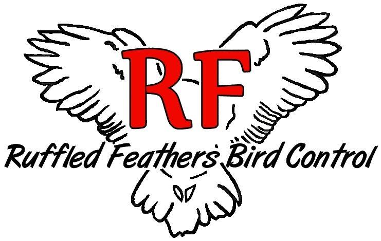Ruffled Feathers Bird Control