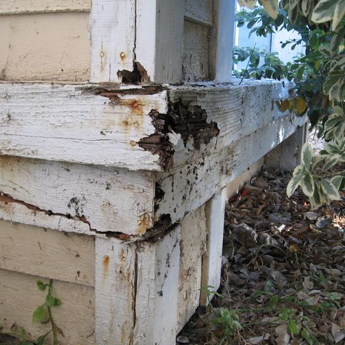 Dryrot or wood damage at exterior wood trim.