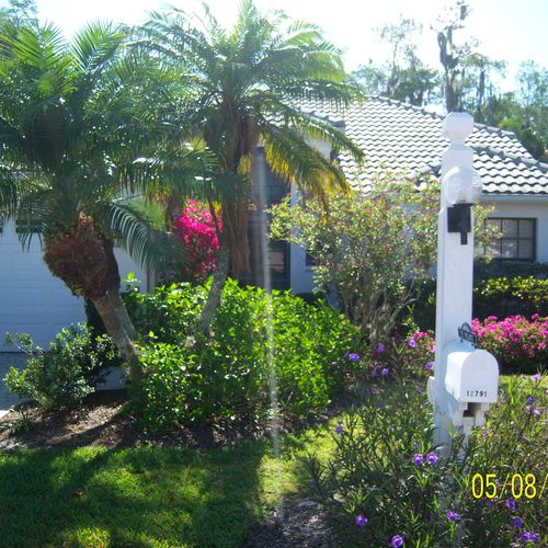 Landscaping services for great curb appeal