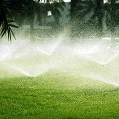 Avatar for Precision irrigation Hobbs, NM Thumbtack