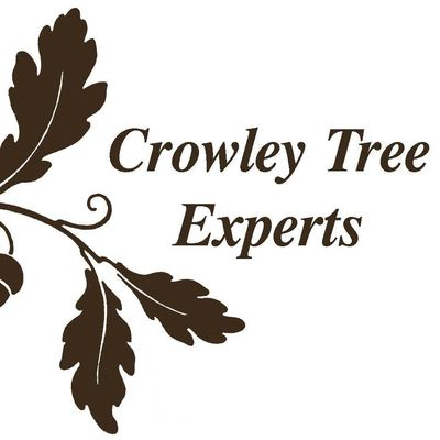 Avatar for Crowley Tree Experts, Inc.