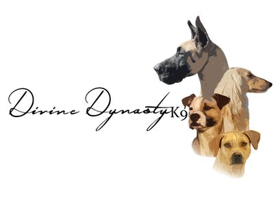 Avatar for Divine Dynasty K9 Temple, TX Thumbtack