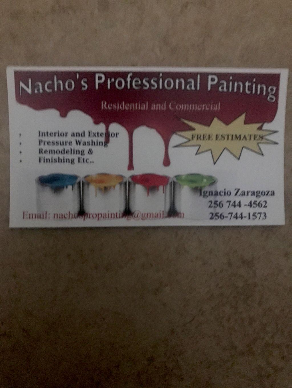 Ignacio's Pro Painting