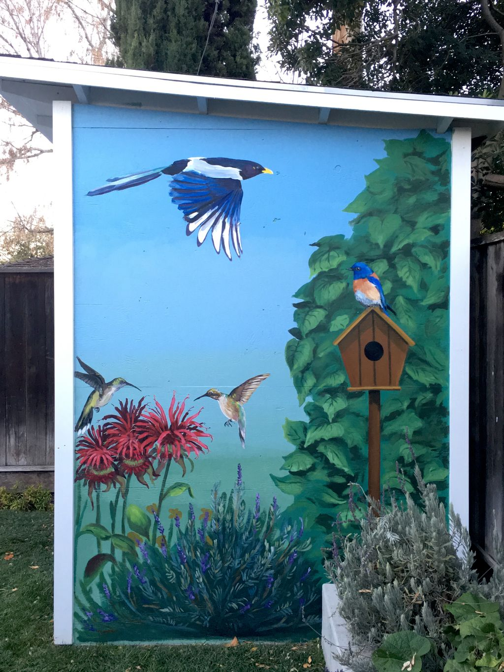Murals for Home Owners