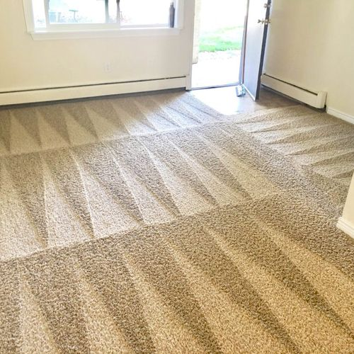 Hi this is our job hundred percent true look like new carpet cleanings