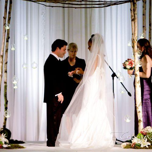 Elegant wedding at Atlanta Sheraton Hotel