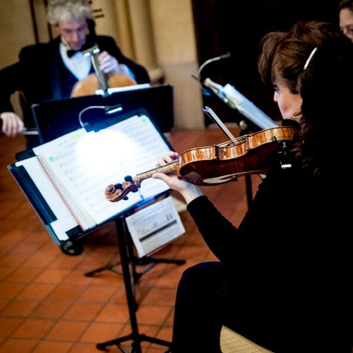 The Antares Musicians performing at a wedding