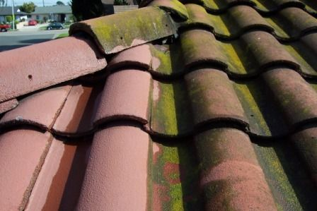 Roof Cleaning!