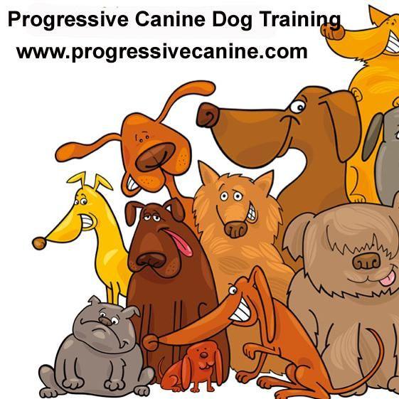 Progressive Canine Dog Training and Behavioral ...