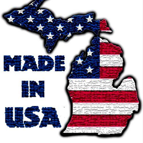 Made In Michigan Logo