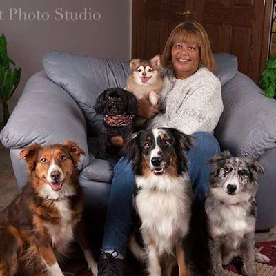 Avatar for Special Friends Pet Sitting Service LLC Dayton, OH Thumbtack