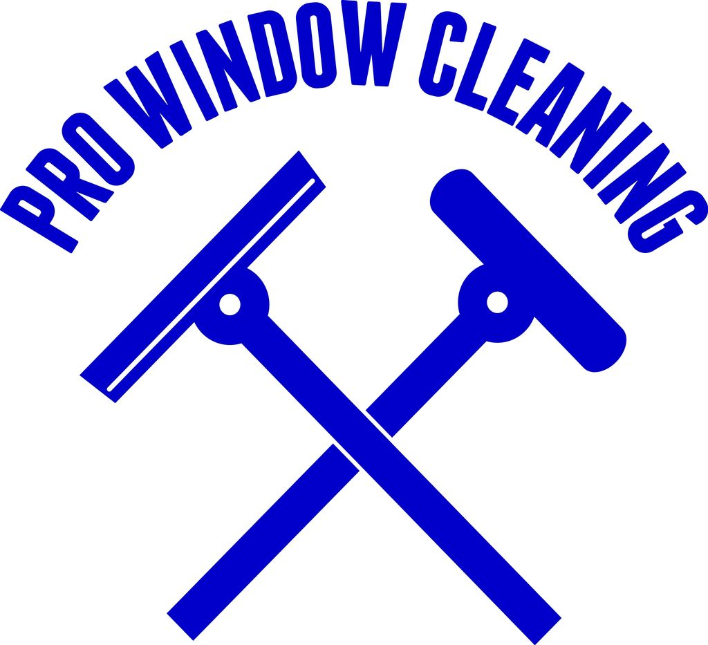 Pro Window Cleaning