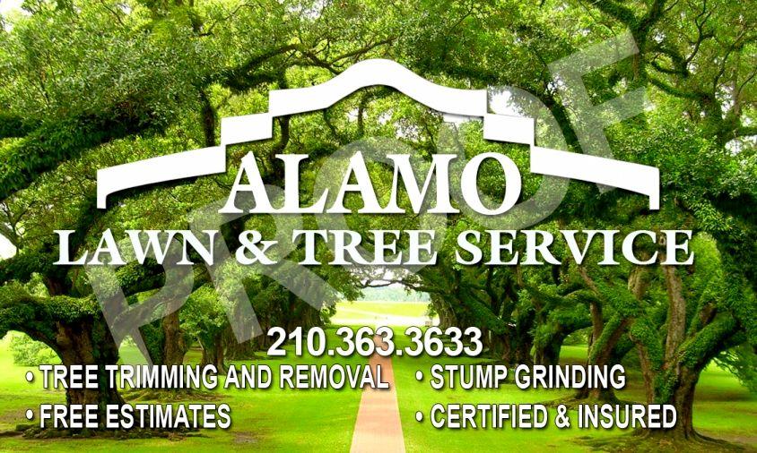 Alamo Lawn & Tree Service