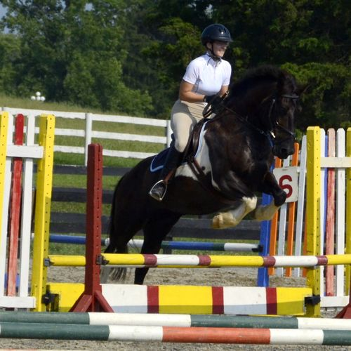 Becca, Show Jumping on her Large Pony, Mr. Jiggs.