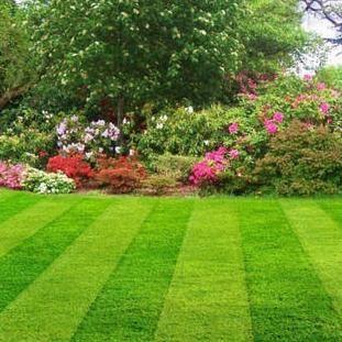North Texas Lawns