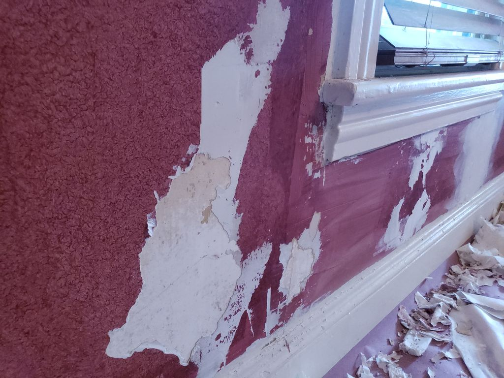 Paper Removal, Repairs and Painting