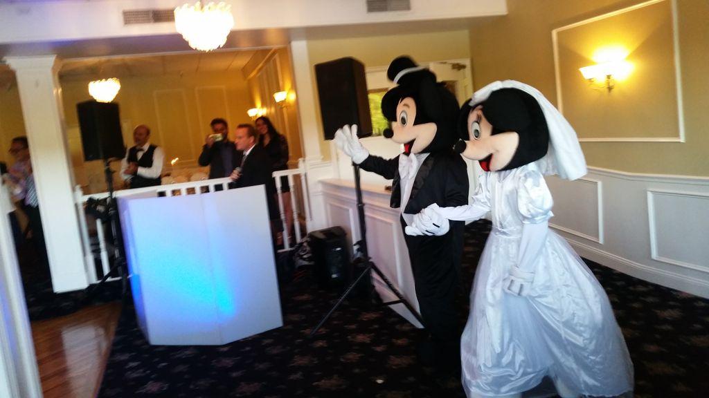 Disney Wedding DJ and More