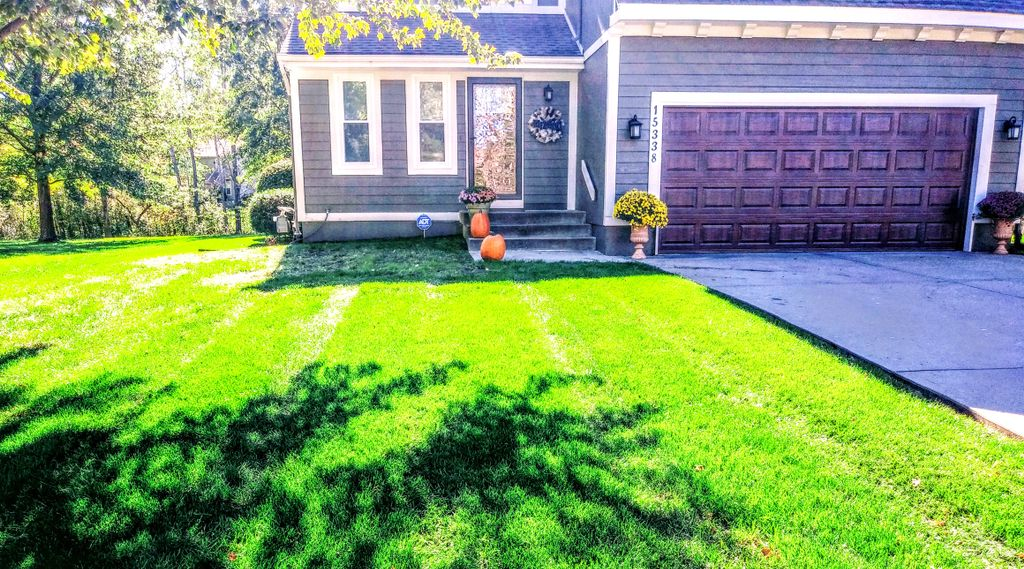 Mow and Trim