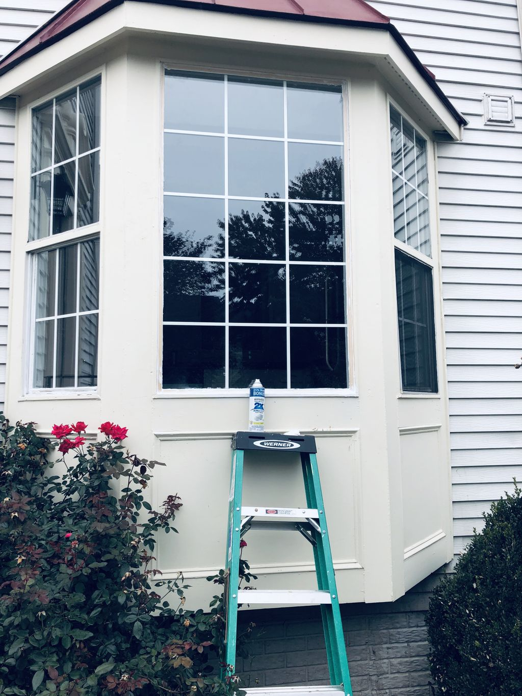 2 Windows Glass Replacement
