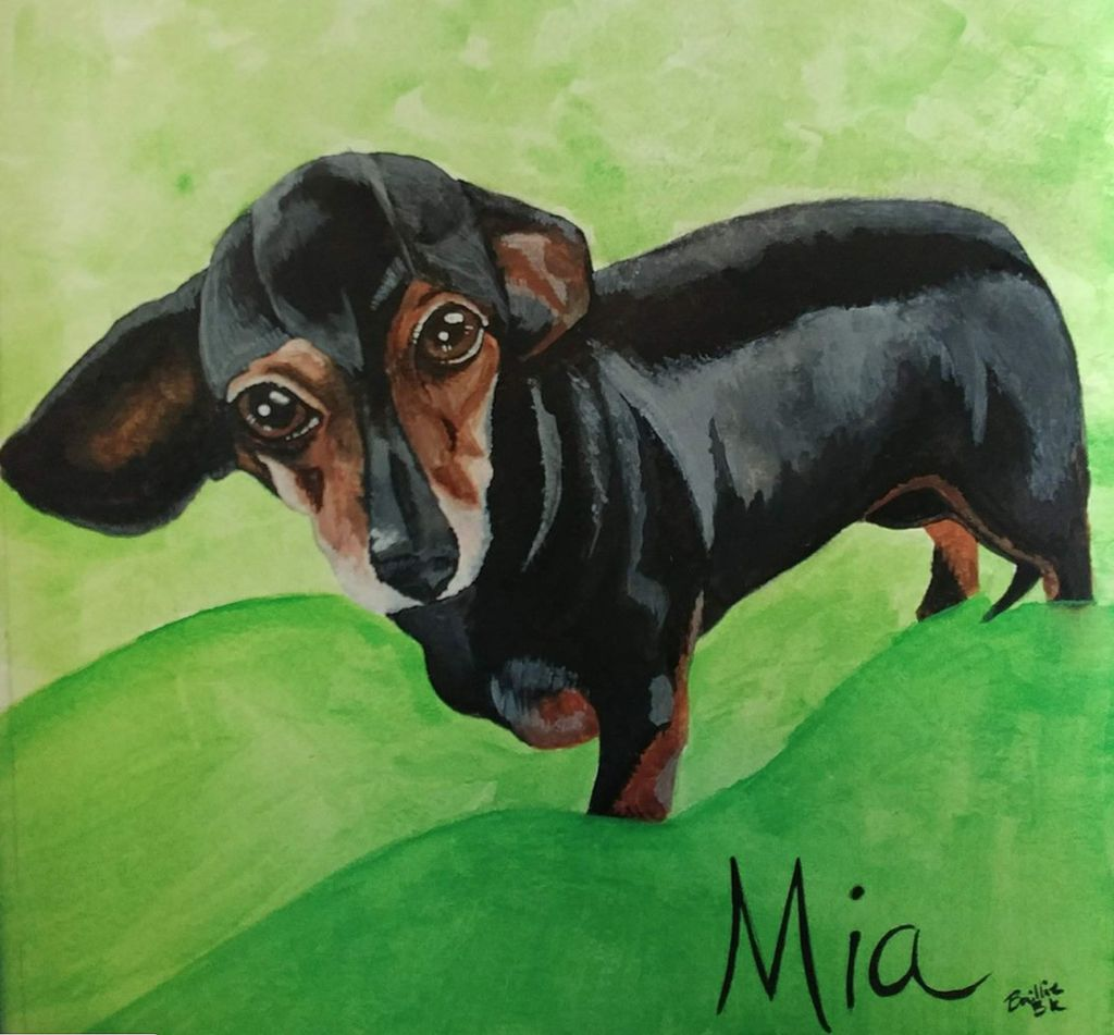 Pet Memorials and Portraits